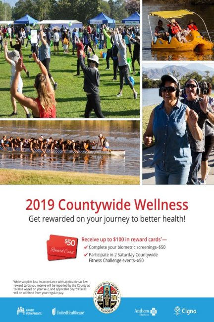 2019 Wellness Program